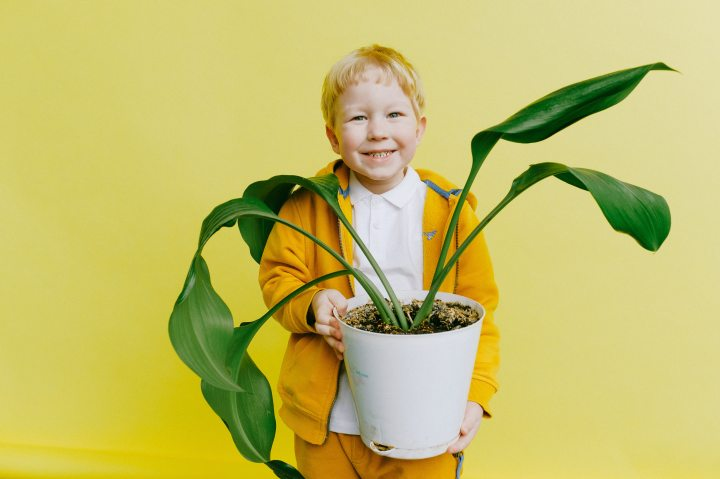boy taking responsibility of a plant